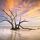 The Calm - Folly Beach at Sunset - Charleston, SC, USA by Dave Allen