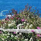 By The Sea, By The Sea, By The Beautiful Sea by Loree McComb