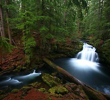 Oregon Waterfall, North Umpqua Country by Larry Turner