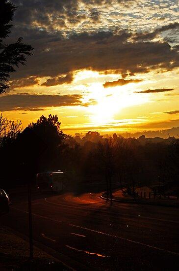 Bus At Dawn by Evita