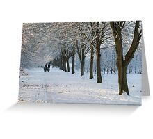 Snowy Weather in Maynooth Greeting Card