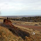 Colorado Red Rocks,  by Nycon360