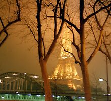 Eiffel through the trees, Paris by Alberto  DeJesus