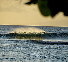 Shinning sunset light through a wave by Carl LaCasse