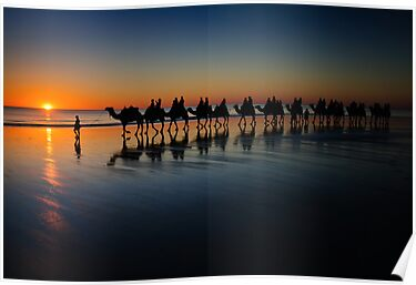 Cable Beach Camels by Jan Fijolek