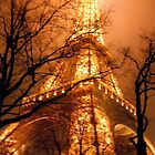 Misty Eiffel Tower, Paris  by Alberto  DeJesus
