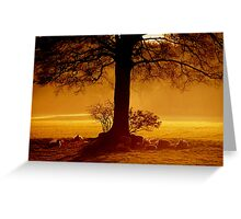 """""""THE GOLDEN HOUR"""" Greeting Card"""