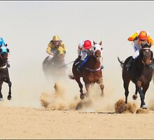 Hooves send Dust flying in the 2011 Birdsville Cup by Alwyn Simple