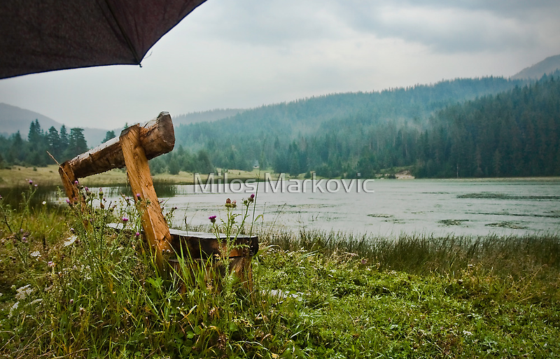 By the lake  by Milos Markovic
