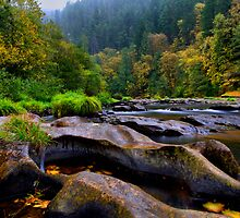 The Look Of Nature ~ Lower Lake Creek ~ by Charles & Patricia   Harkins ~ Picture Oregon