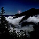Buck Mountain Joy ~ Oregon Cascades ~ by Charles & Patricia   Harkins ~ Picture Oregon