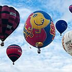 Balloon Festival by cameraimagery
