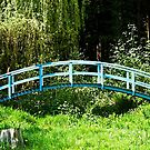 The Blue Bridge, Prescoed, Wales by buttonpresser