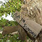 Twice on Sundays by westcountyweste