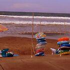 Aoshima Beach, Japan  by Sunny Shaffner