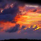 Nagasaki Night Sky  by Sunny Shaffner