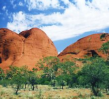 The Olgas by Michael John
