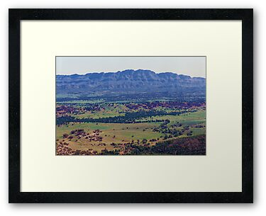 Flinders Ranges from Wilpena Pound by Michael John