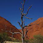 Lone Tree - Kata Tjuta by Linda Fury