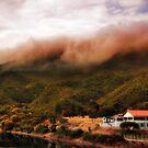 Mountains in the Mist by Erica Yanina Lujan