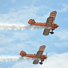Breitling Wingwalkers at the Bournemouth Airshow 6 by Red47