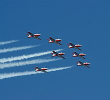 Snowbirds by Jeannie  Mazur