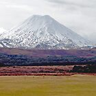 Mt Ngauruhoe, New Zealand by Margaret  Hyde