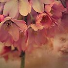Blossom Baby  by Chris Armytage