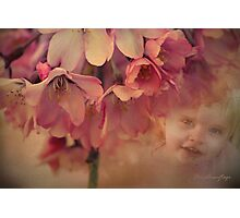 Blossom Baby  Photographic Print