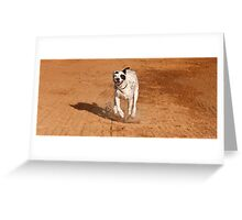 WOW! I'm Feeling Good About Today! Greeting Card