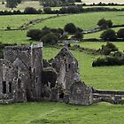 Hore Abbey, cashel by Nicola Lee