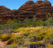Hiking in the Bungle Bungles by georgieboy98