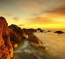Golden Garron.  by Fred Taylor