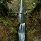 Multnomah Falls by Richard Ferguson