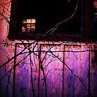 window in window by nessbloo