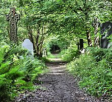 old nabwood cemetry  shipley west yorkshire by simon sugden