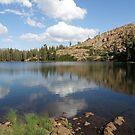 Upper Rock Lake Reflections by Patty (Boyte) Van Hoff