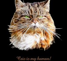 "Molly says, ""Cris is MY human! by Liane Pinel"