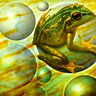 Effervescent Stream by Diane Johnson-Mosley