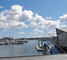 Yamba Marina showing cafe - NSW Australia by Margaret Morgan (Watkins)