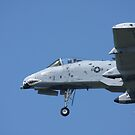 A-10 Thunderbolt by Karl R. Martin