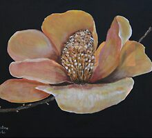 Magnolia by Christine Clarke
