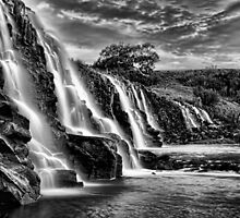Hopkins falls by leigh banks