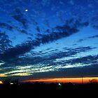 Prairie Palette by Ogre