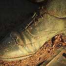 Shoe Shine by reindeer