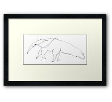 Arnie the aardvark invites you to the Web of Whimsy Framed Print