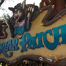The Briar Patch by Rechenmacher