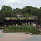 Disney's Animal Kingdom Main Gate by Rechenmacher