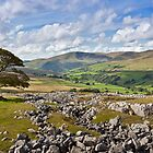 The Howgill Fells by mountainsandsky