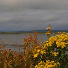 Stenness by kalaryder
